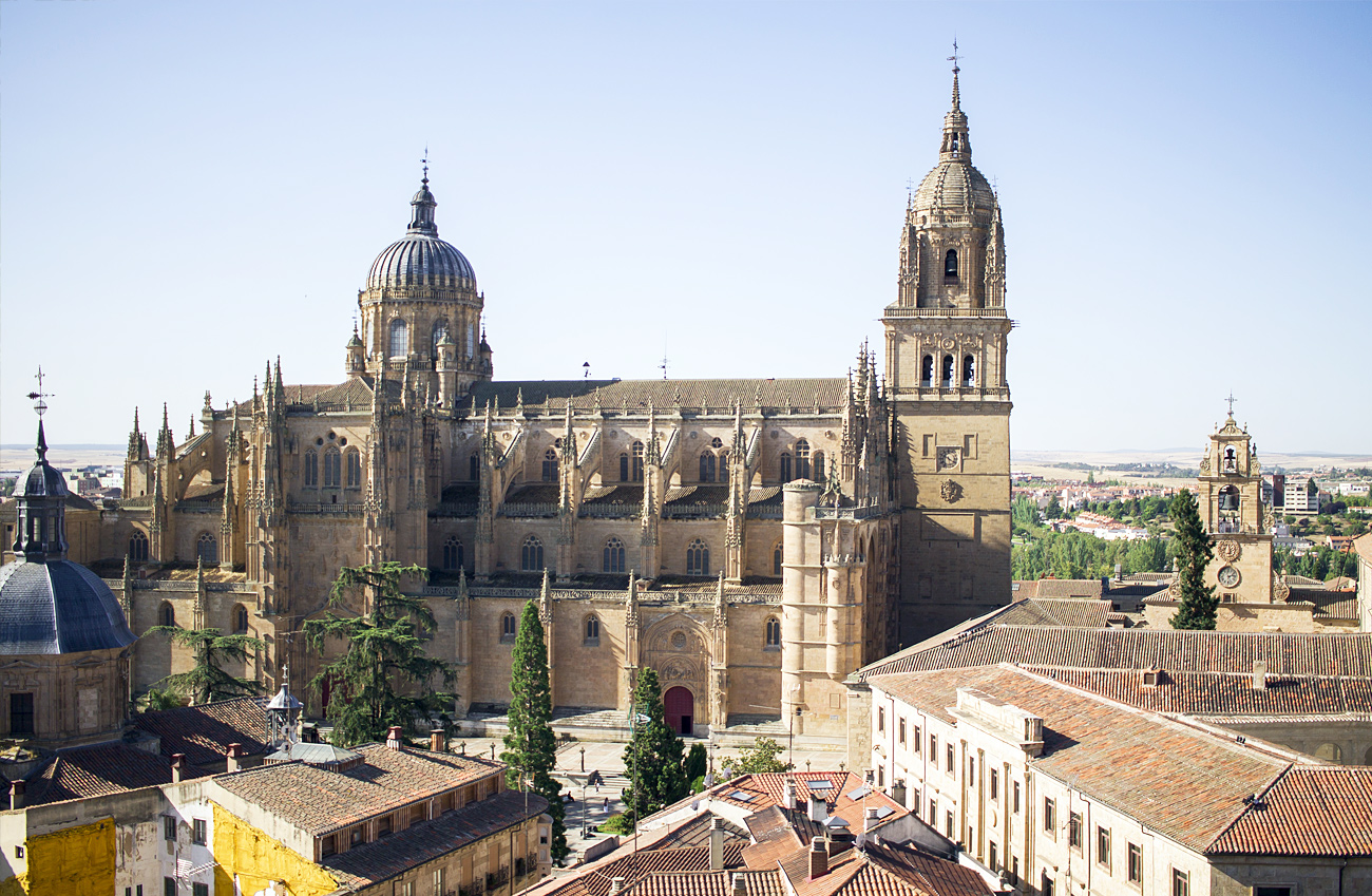 Catedral Salamanca Scala Coeli