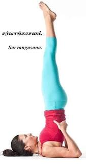 Sarvangasana female