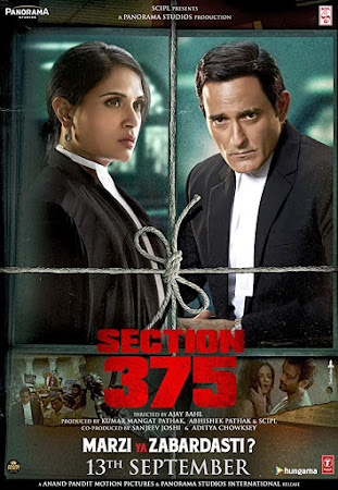 Poster Of Bollywood Movie Section 375 2019 300MB Pdvd Full Hindi Movie