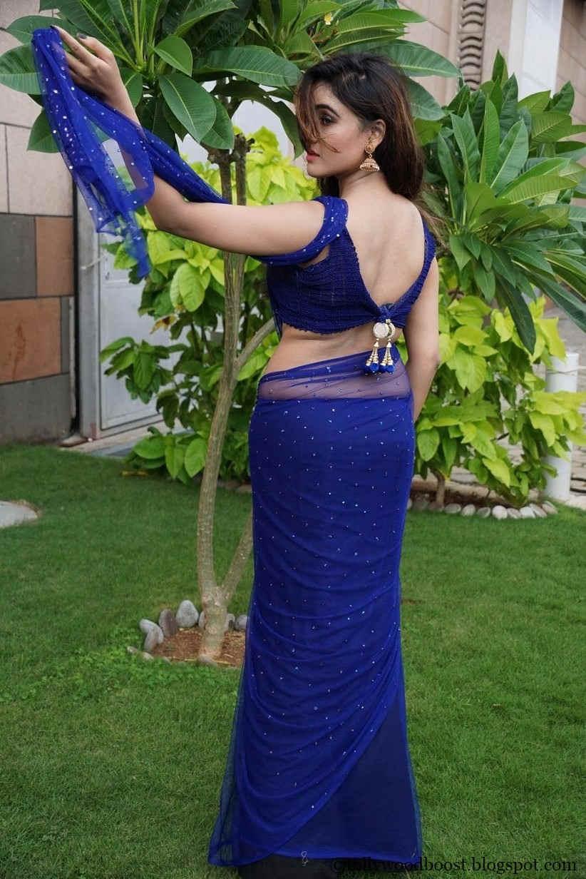 Actress Sony Charishta Hip Navel Show In Blue Saree