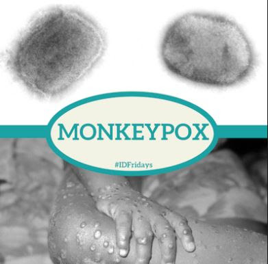 WHAT IS MONKEYPOX? ALL YOU NEED TO KNOW ABOUT THE SYMPTOMS, MODE OF TRANSMISSION. ETC (DETAILS)