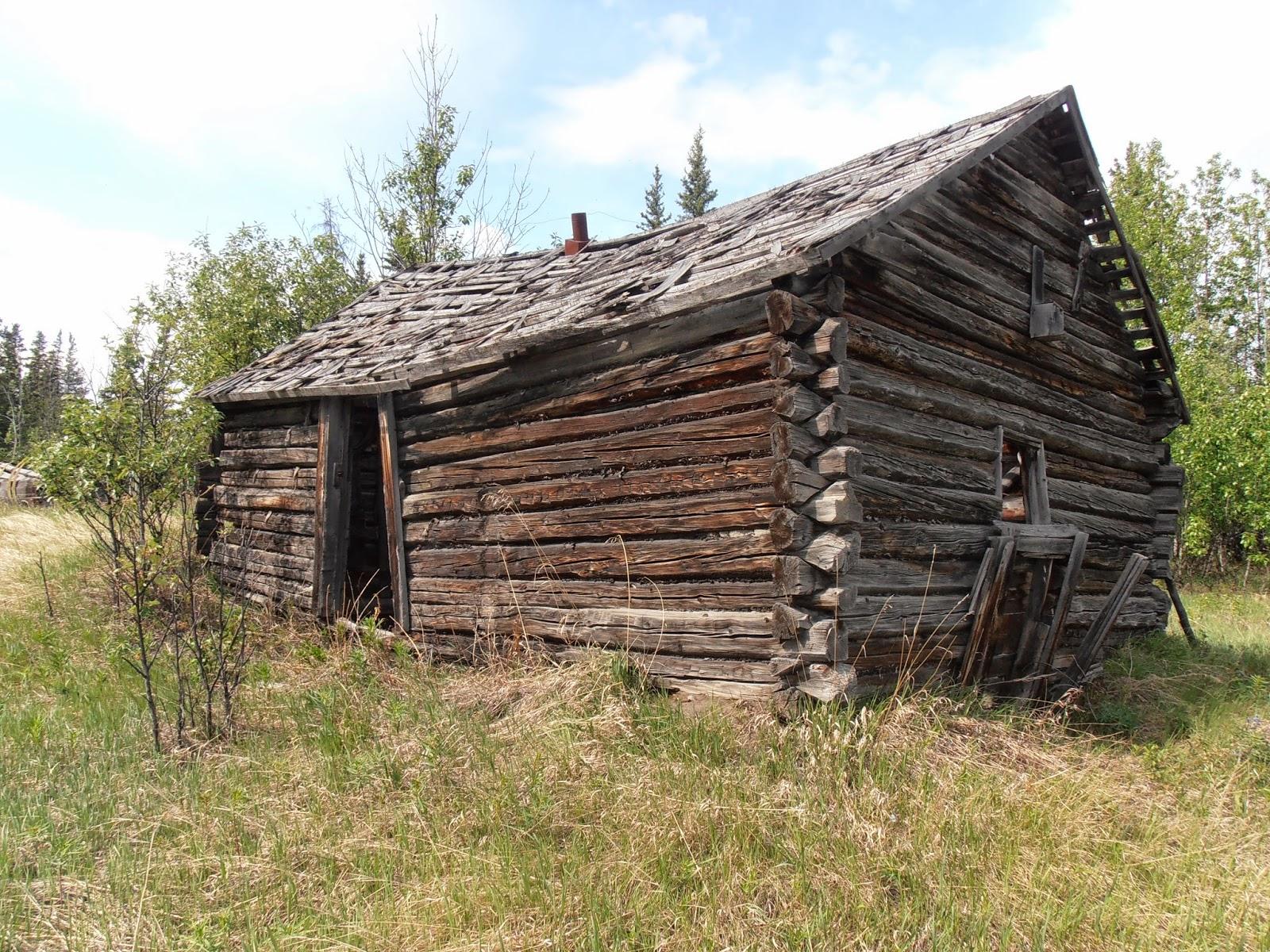 Bearfoot Guides Insight Saving Alaskas Historic Log