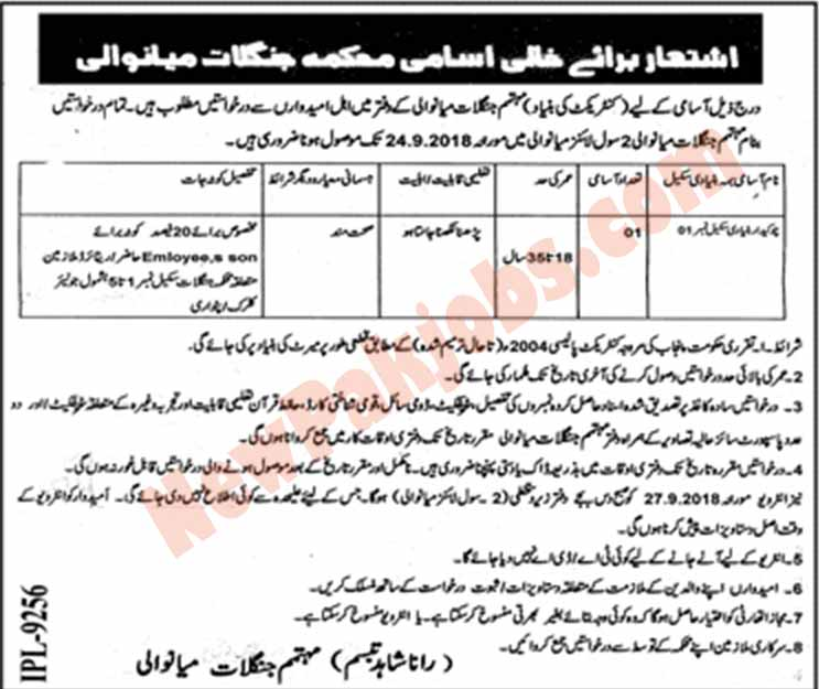Latest Jobs In Forest Department District Mianwali 2018