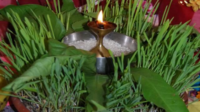 harela festival,uttarakhand,harela,harela festival uttarakhand in hindi,harela festival of uttarakhand,festival of uttarakhand,harela festival in uttrakhand,uttarakhand festival,uttarakhand folk festival,harela tyohar,harela uttarakhand festival,uttarakhand harela festival,#harela #uttarakhand #festival,festival celebration uttarakhand.,harela festival celecbrate,harela in uttrakhand india,gk of uttarakhand