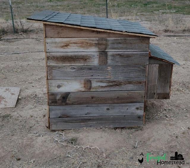 easy chicken coop