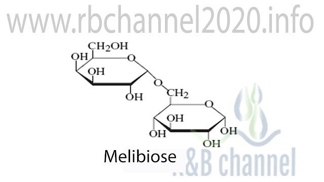 الميليبيوز Melibiose