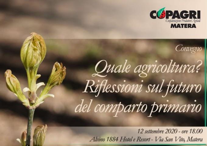 """Copagri Matera: il 12 settembre il convegno """"Quale agricoltura?"""""""