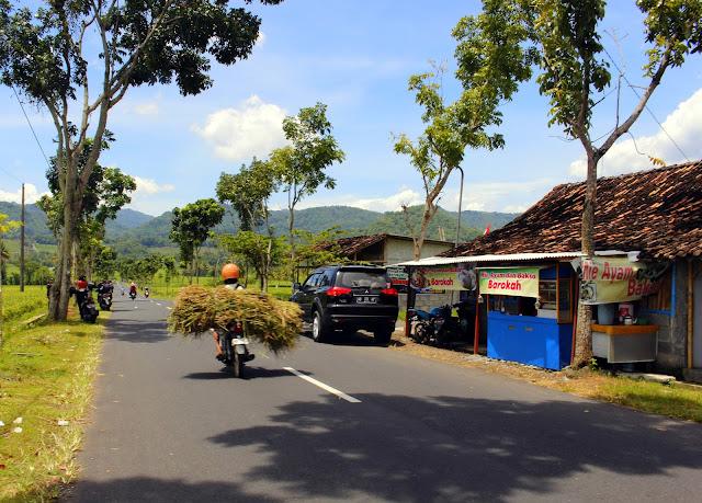 Pemandangan Sawah Desa Kenteng Nanggulan Yang Indah