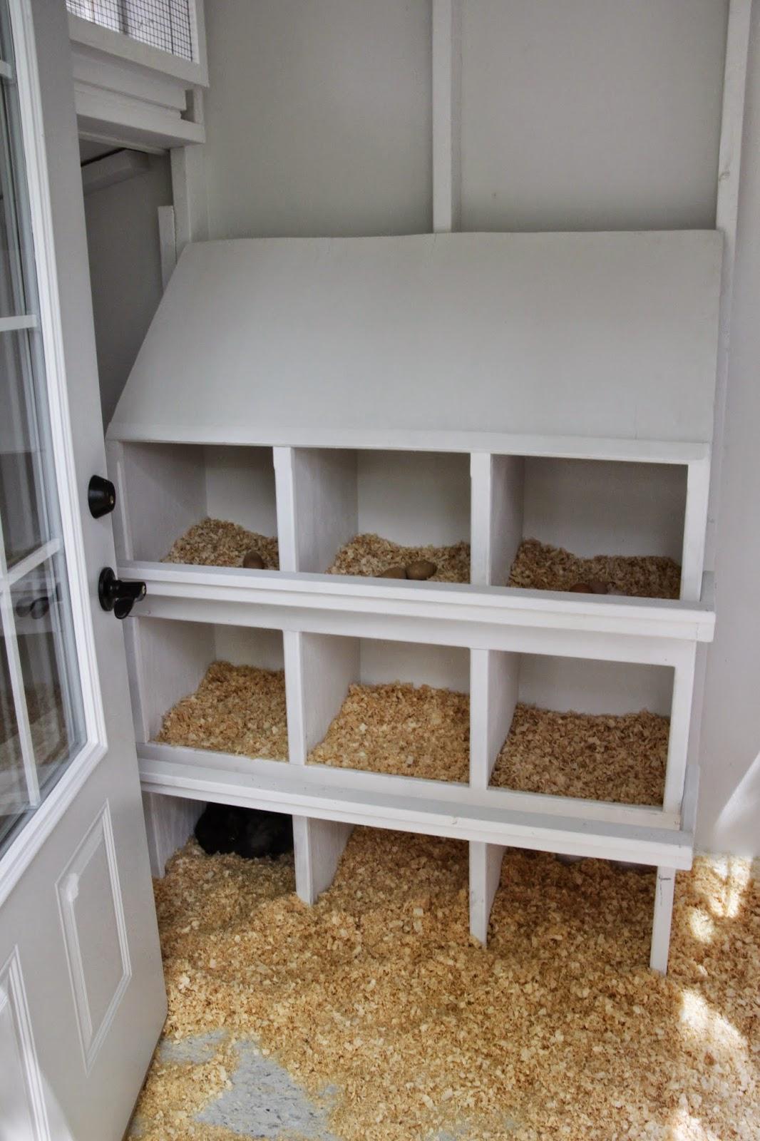 tillys nest chicken coop tour an update