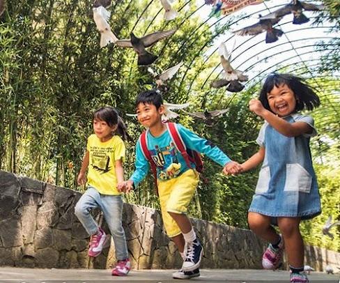 Harga Tiket Jatim Park 2 2020
