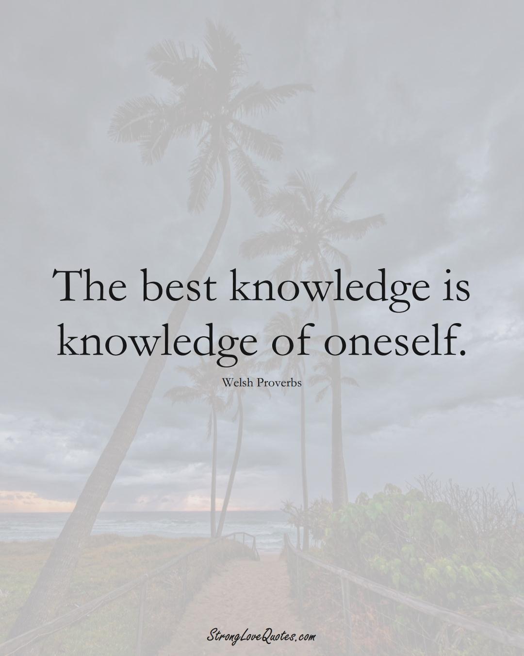 The best knowledge is knowledge of oneself. (Welsh Sayings);  #EuropeanSayings