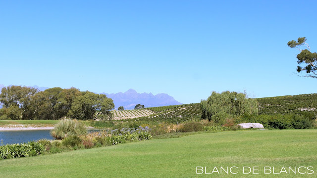 Stellenbosch - www.blancdeblancs.fi