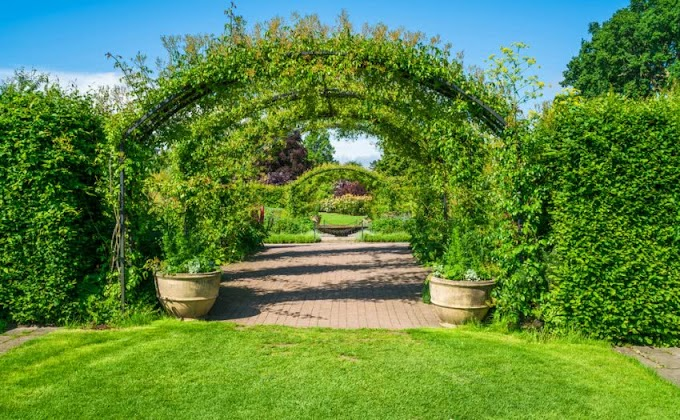 TOP 10 GARDEN FEATURES TO BEAUTIFY YOUR RESIDENTIAL SOCIETY