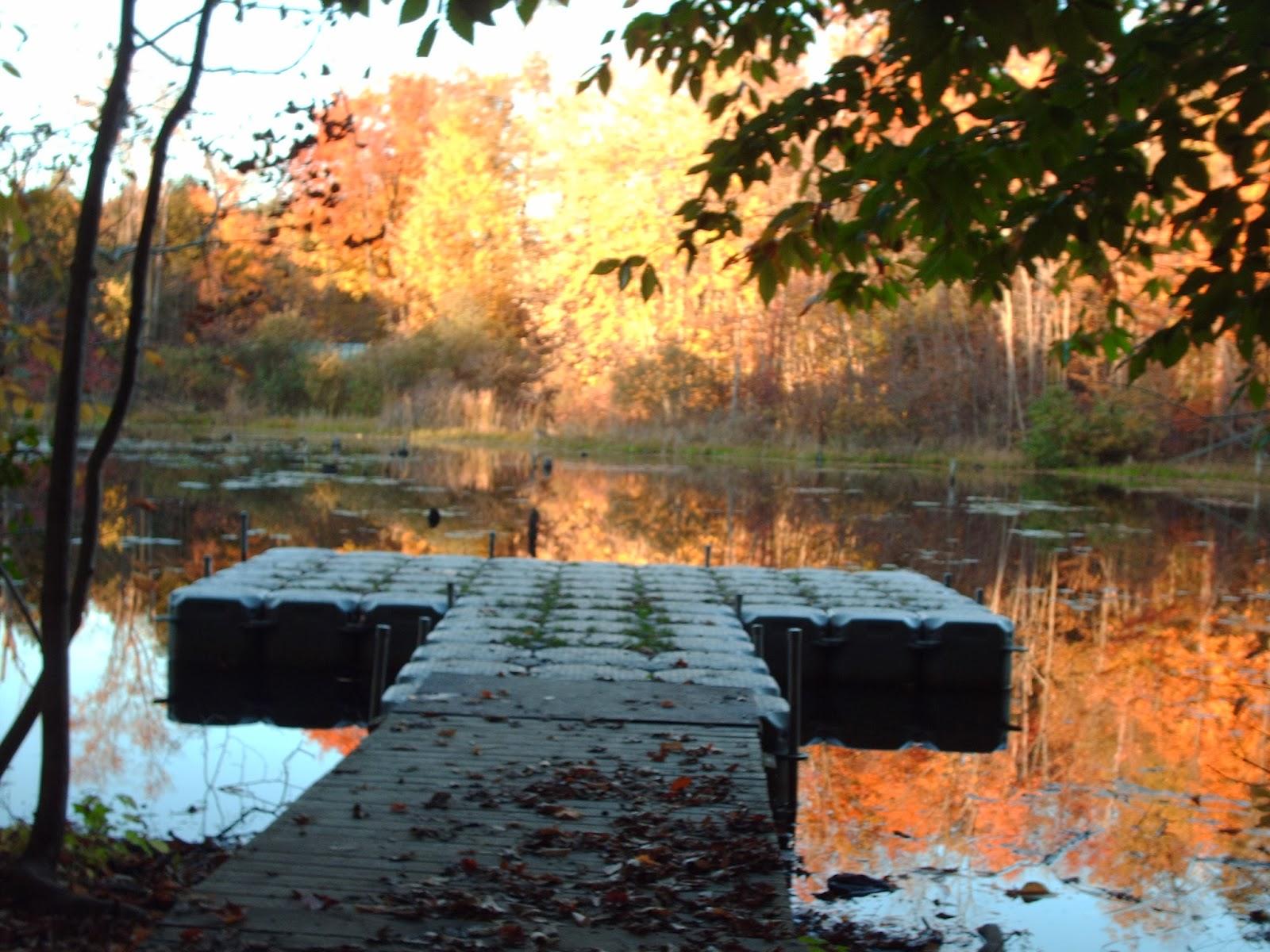 Vansittart Woods floating dock