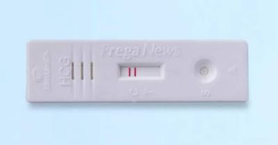 Prega-News-Pregnancy-Test-Kit-