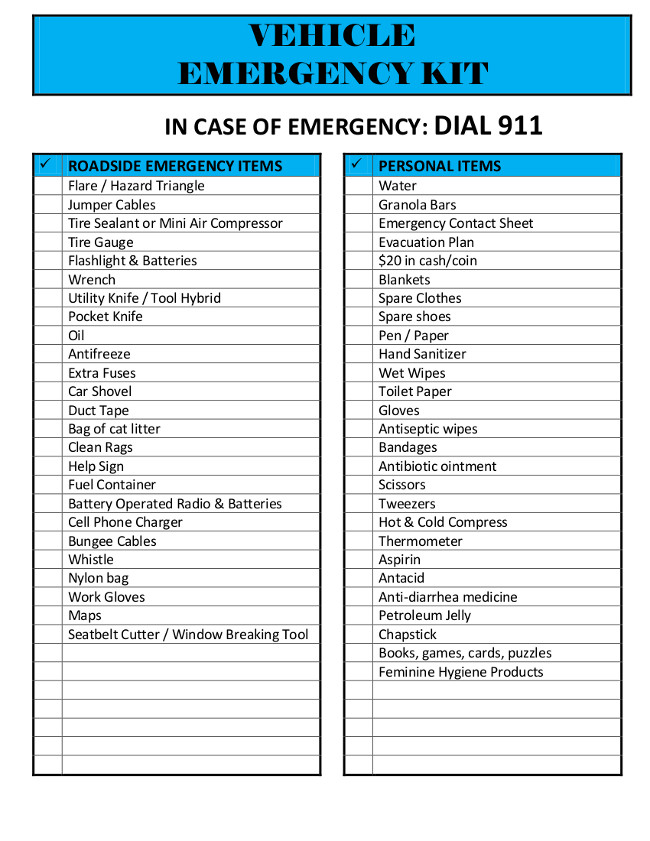 emergency response checklist template - vehicle emergency kit the lovebugs blog