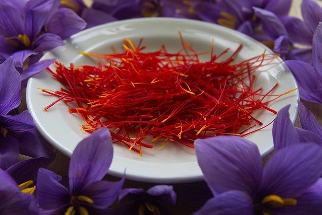 Manfaat Saffron Untuk Ibu Hamil