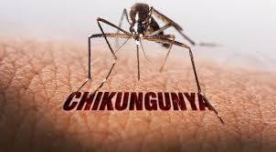 http://www.seh4t.com/2017/07/obat-chikungunya.html