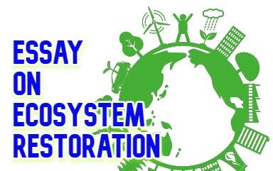 Essay on ecosystem restoration