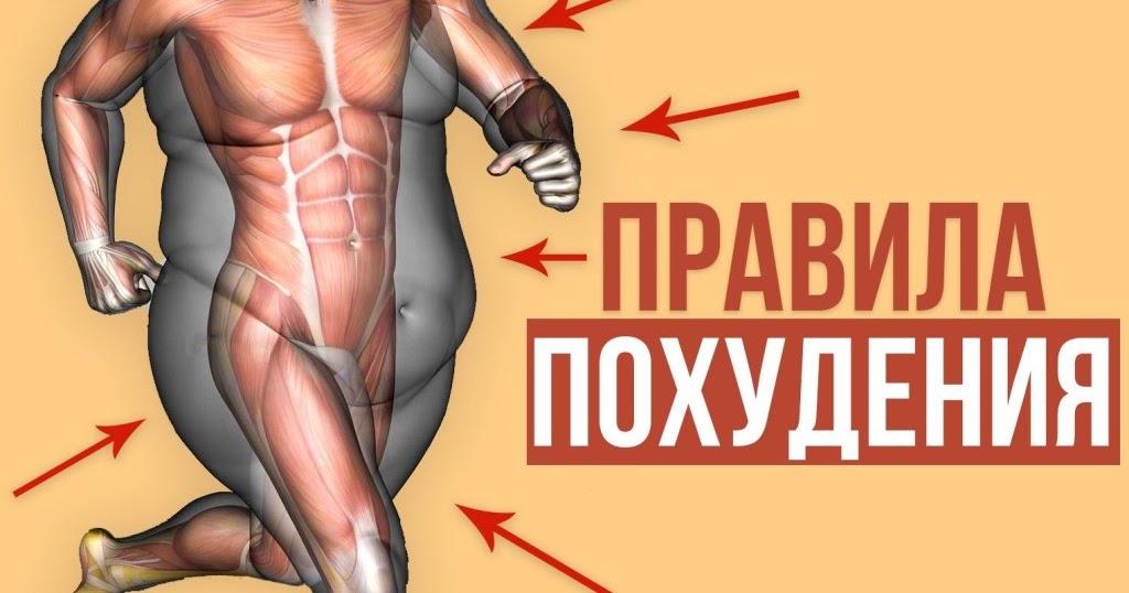 Самые Главные Правила Похудения.