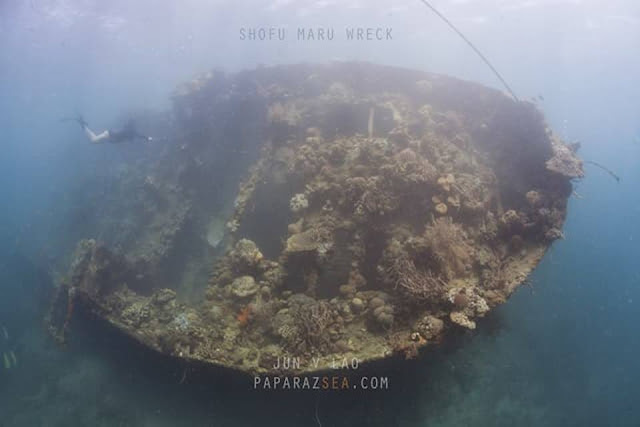 Scuba Diving, Padi, underwater photography, paparazsea