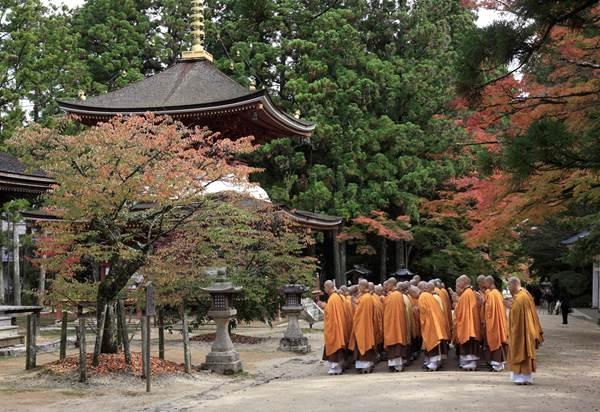 The world's natural heritage in Wakayama