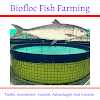 Biofloc Fish Farming- Tanks, Investment, Income And Advantages