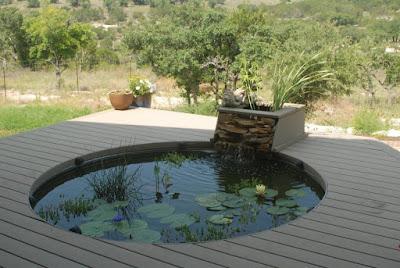 desain kolam ikan minimalis