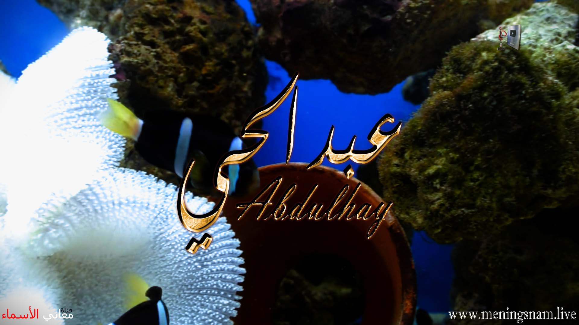 معنى اسم عبد الحي وصفات حامل هذا الاسم Abdulhay