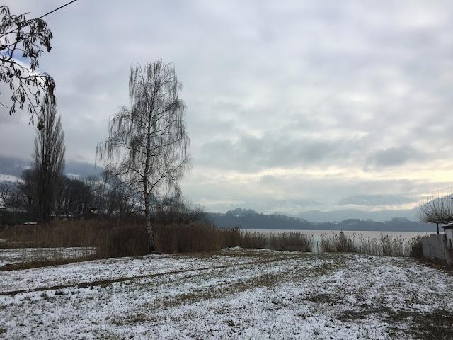 Mein #12tel Blick für Ende Dezember: Schnee im Ried