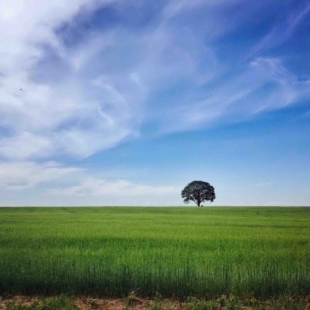 15+ Best Hd Landscape Wallpaper