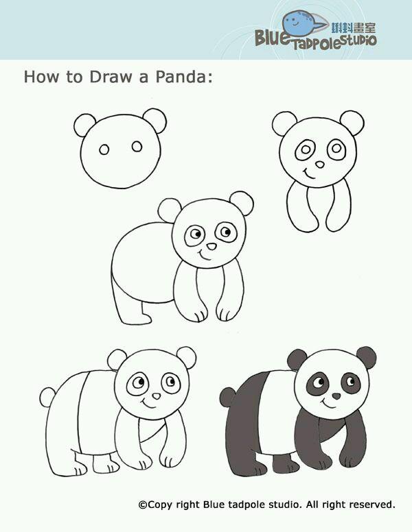 Cerita Pengalaman Pelajaran 6 Langkah Mudah Menggambar Hewan