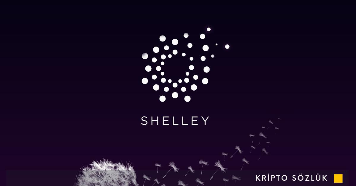 Cardano Shelley'ye Doğru Bir Sonraki Adımı Atıyor