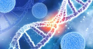 การตรวจหาความผิดปกติของยีนที่เกี่ยวข้องกับการเกิดและการรักษามะเร็ง