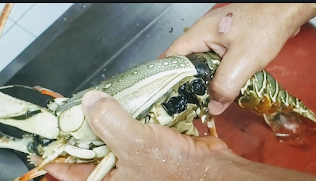 Removing lobster head to peel for lobster hot garlic sauce recipe