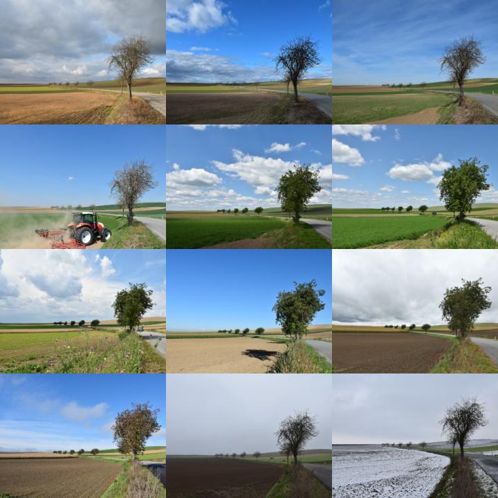 ein Standort - zwölf Fotos