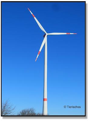 bei den Windrädern