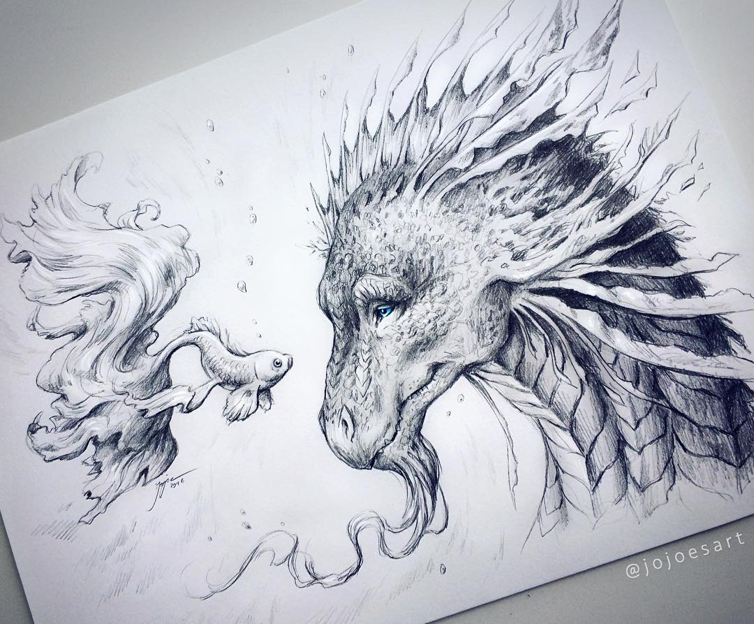 02-Magical-Encounter-Dragon-and-Fish-Jonas-Jödicke-jojoesart-Fantasy-Animal-Drawings-with-Souls-of-Nature-www-designstack-co