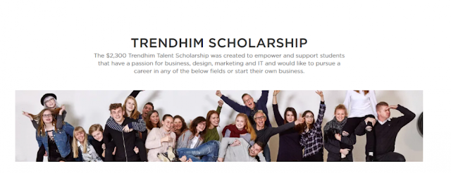 Trendhim Talent Scholarship 2019 | UG/PG Students