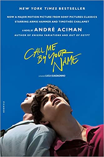 Call Me by Your Name A Novel valentine day romantic books