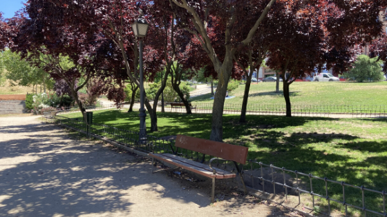 Banco en un parque