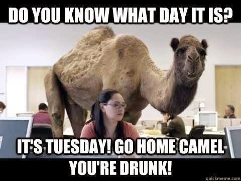 Its Tuesday Tuesday Funny W...