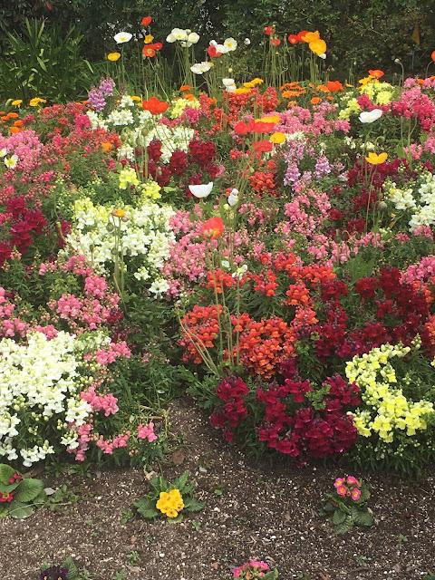 Flower Garden: LadyD Books
