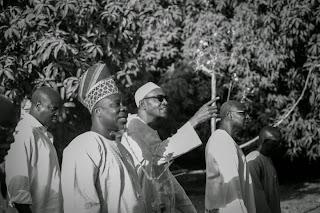 Buhari's farm 1