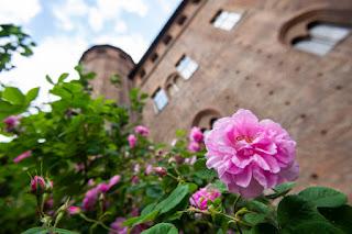 Giardino Medievale Palazzo Madama