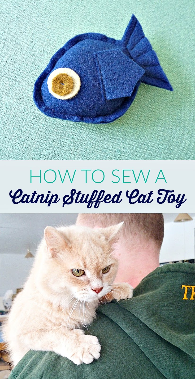 How to make your own catnip cat toy