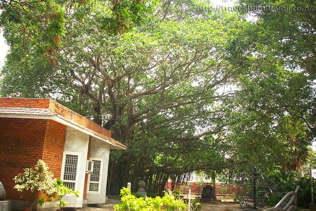 Cholamandal Artists Village Unique places to visit in Chennai