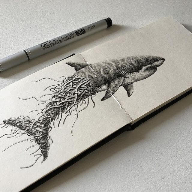 06-Great-White-Shark-Pud-www-designstack-co
