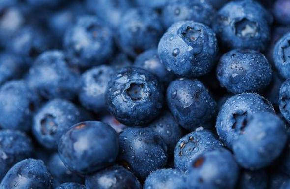 Beberapa Manfaat Kesehatan dari Buah Blueberry