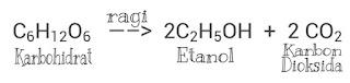 Reaksi Kimia Peuyeum Singkong